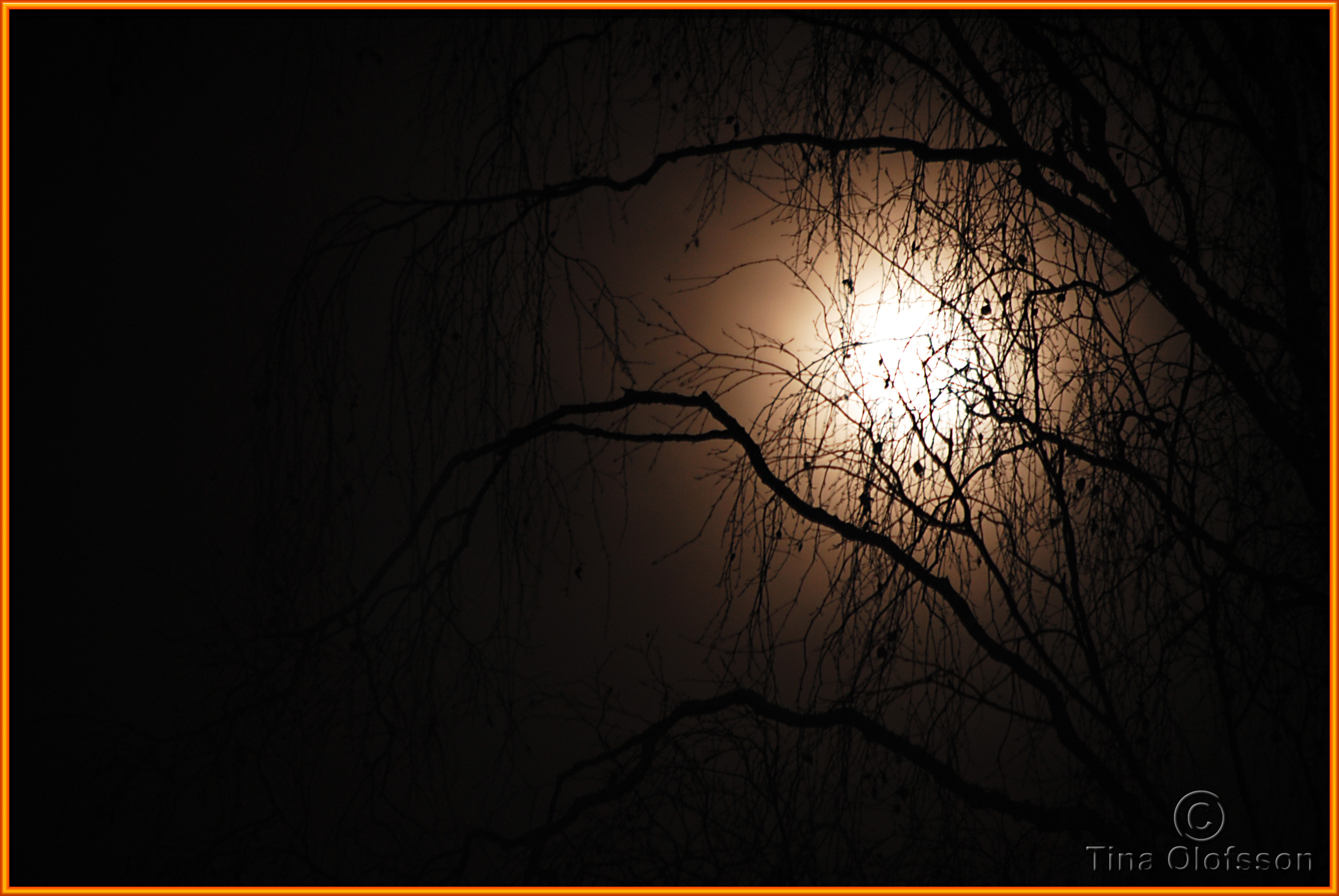 Open window at night - The Moon Lights Up The Night
